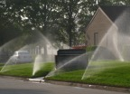 Over-watering causes runoff.