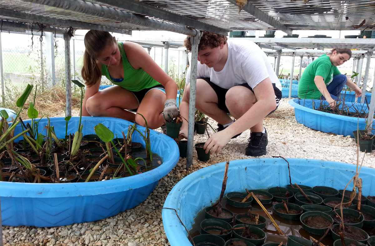 The Floating Wetlands Project Is Off The Ground And Into