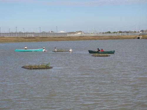 smFloating Wetlands-HBrown (46)